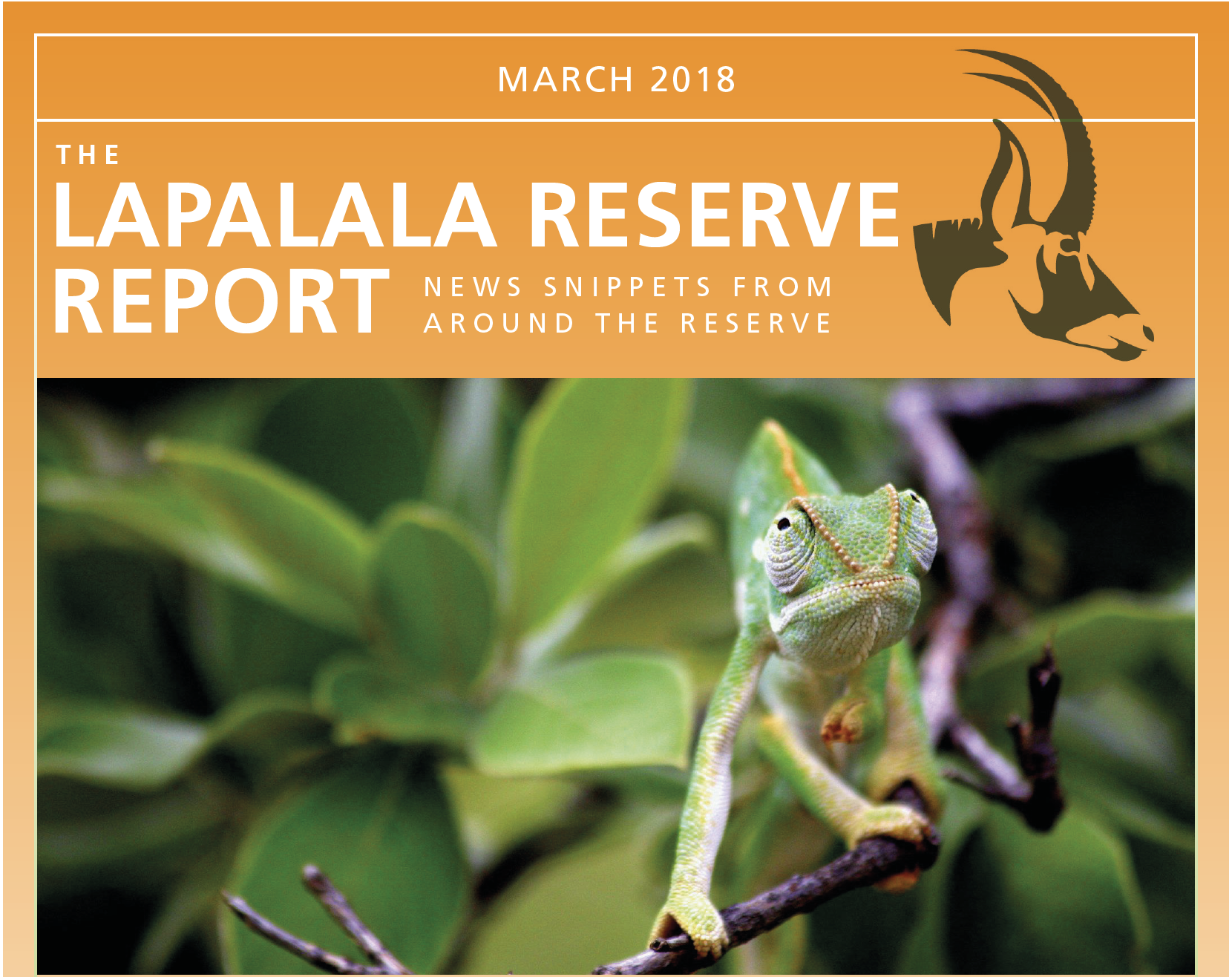 Lapalala Reserve Report – March 2018