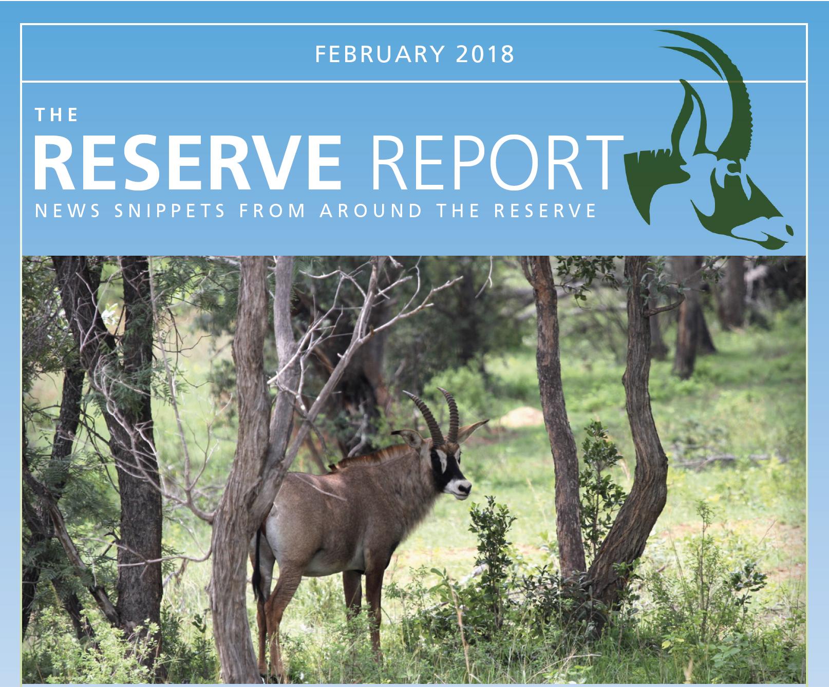 Lapalala Reserve Report – February 2018