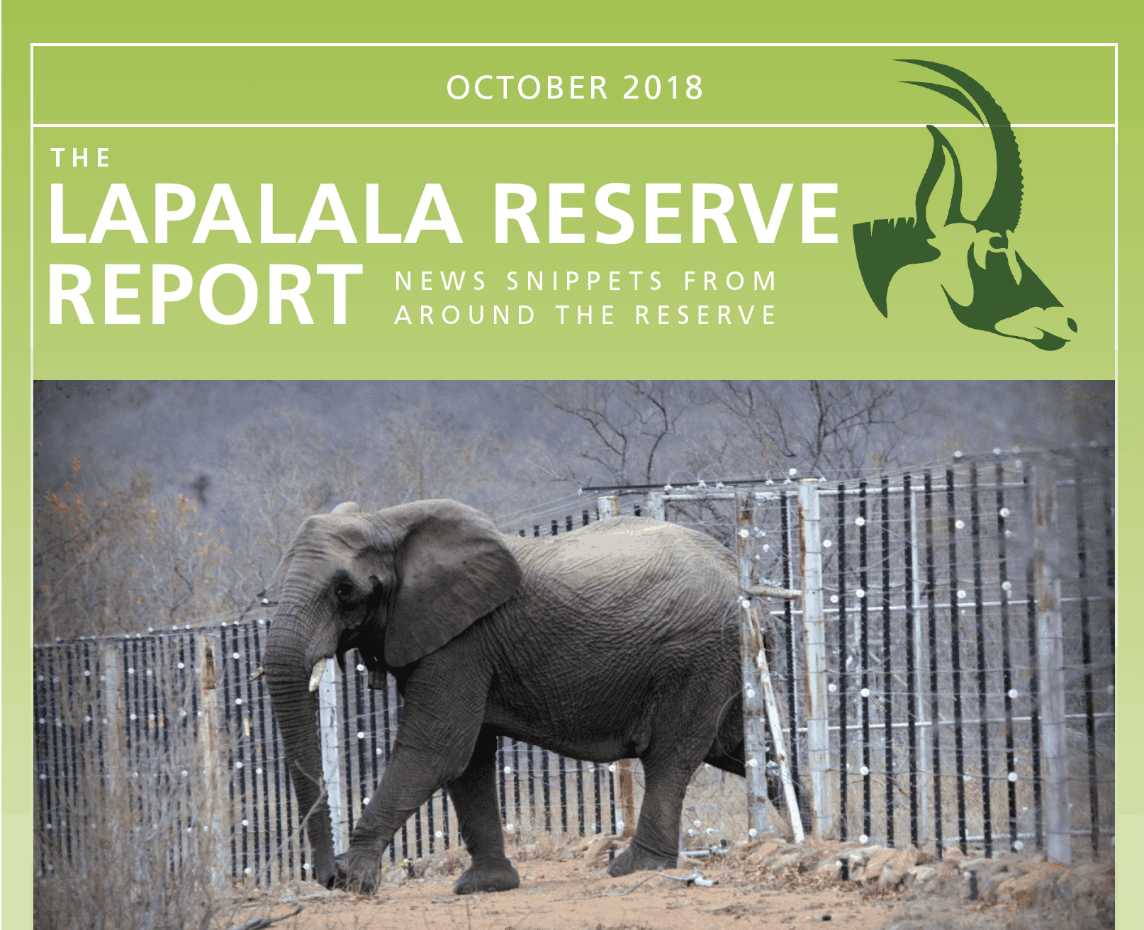 Lapalala Reserve Report – October 2018