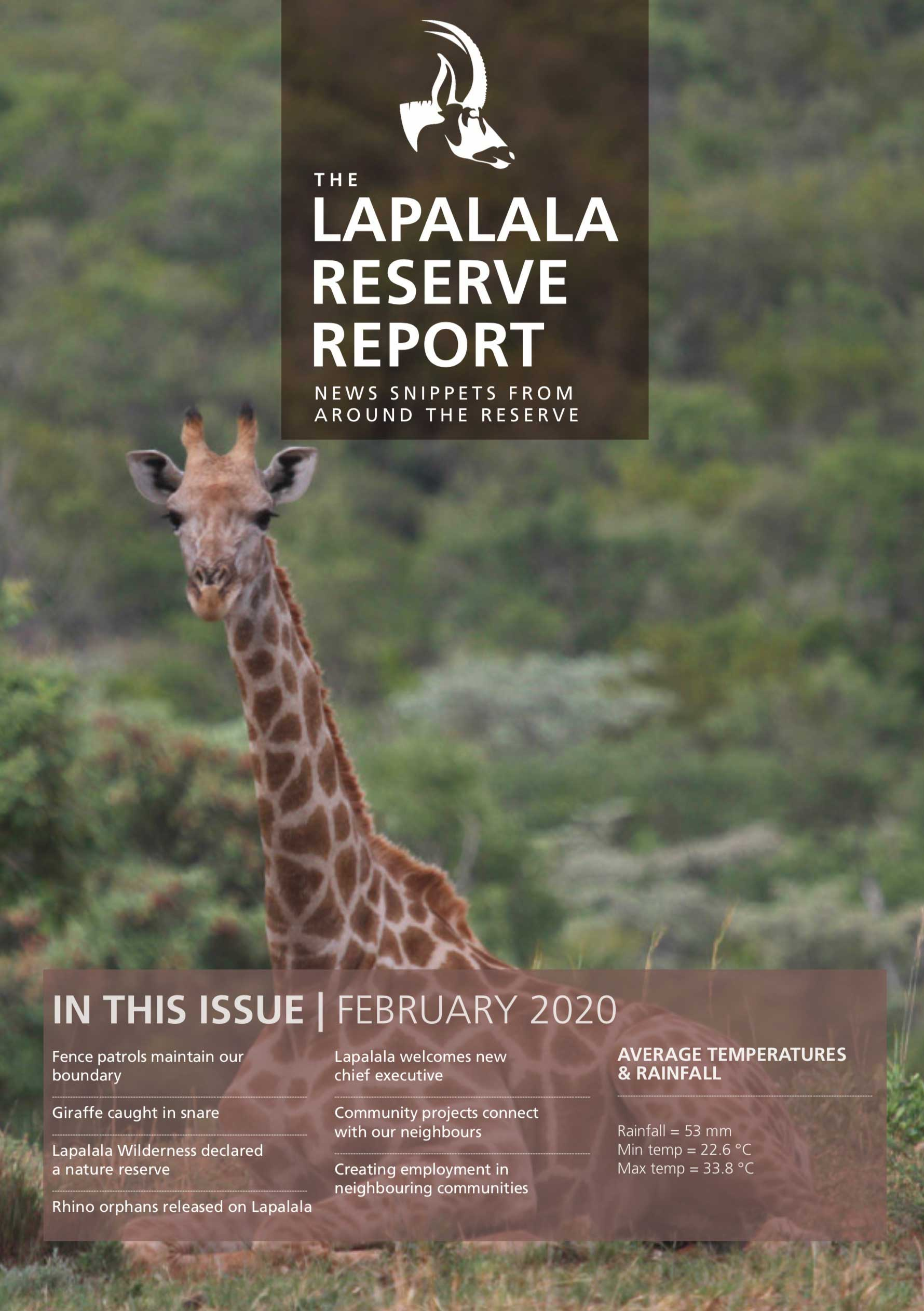 Lapalala Reserve Report – February 2020