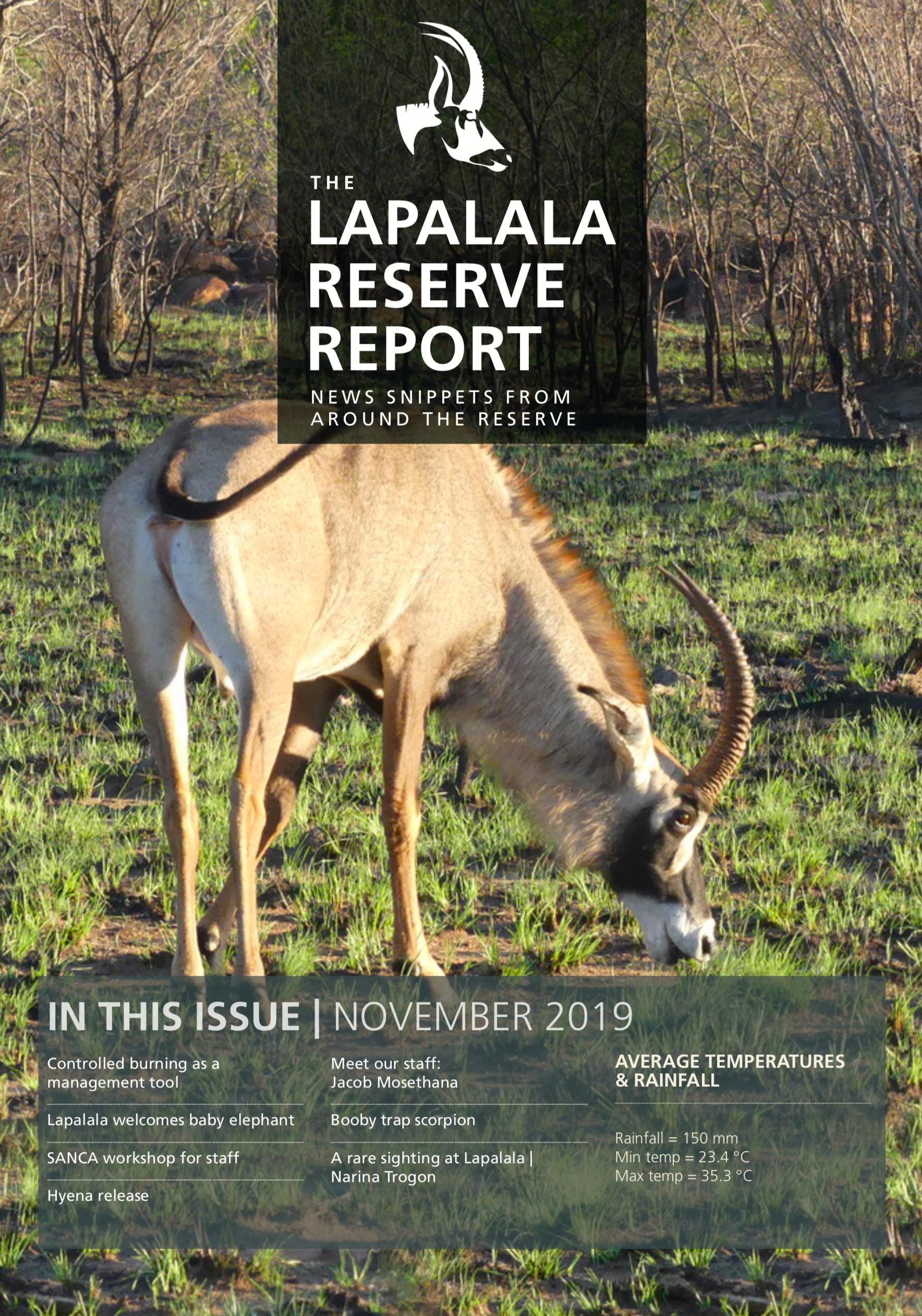 Lapalala Reserve Report – November 2019