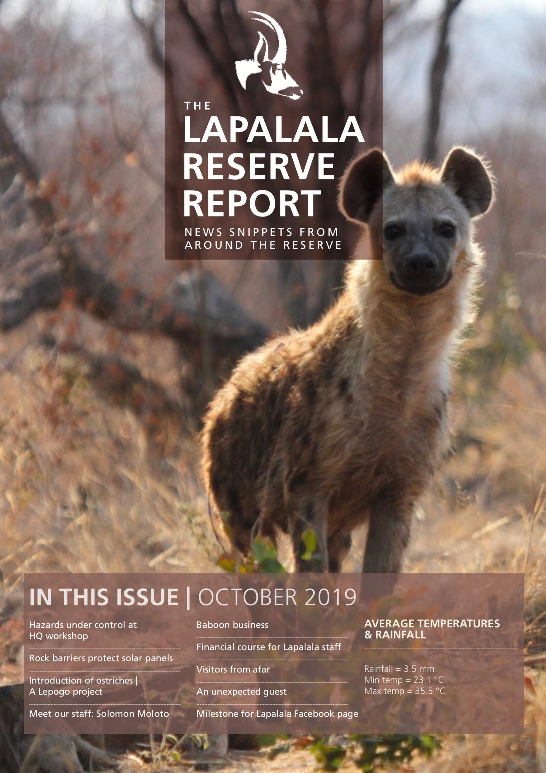 Lapalala Reserve Report – October 2019