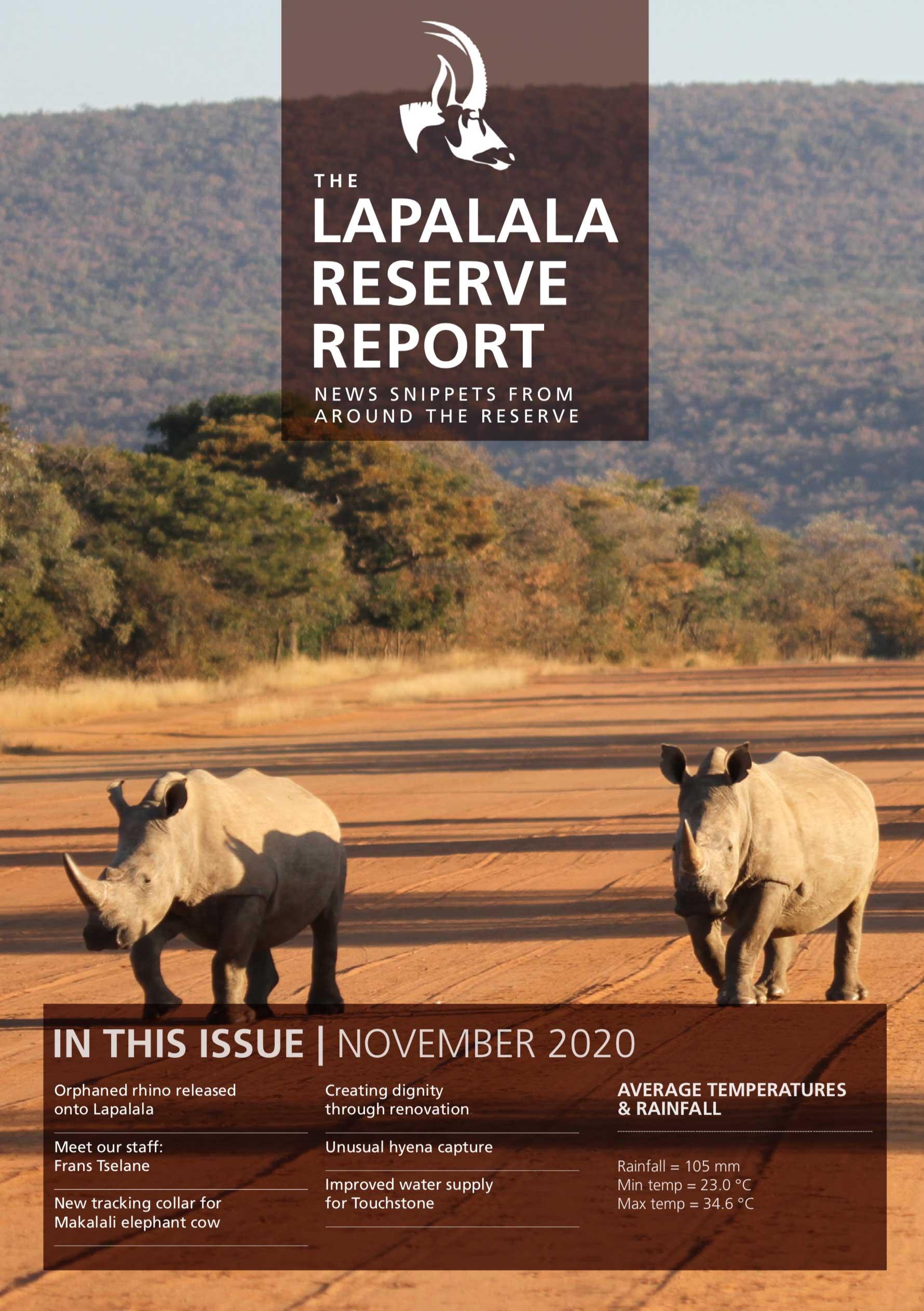 Lapalala Reserve Report – November 2020