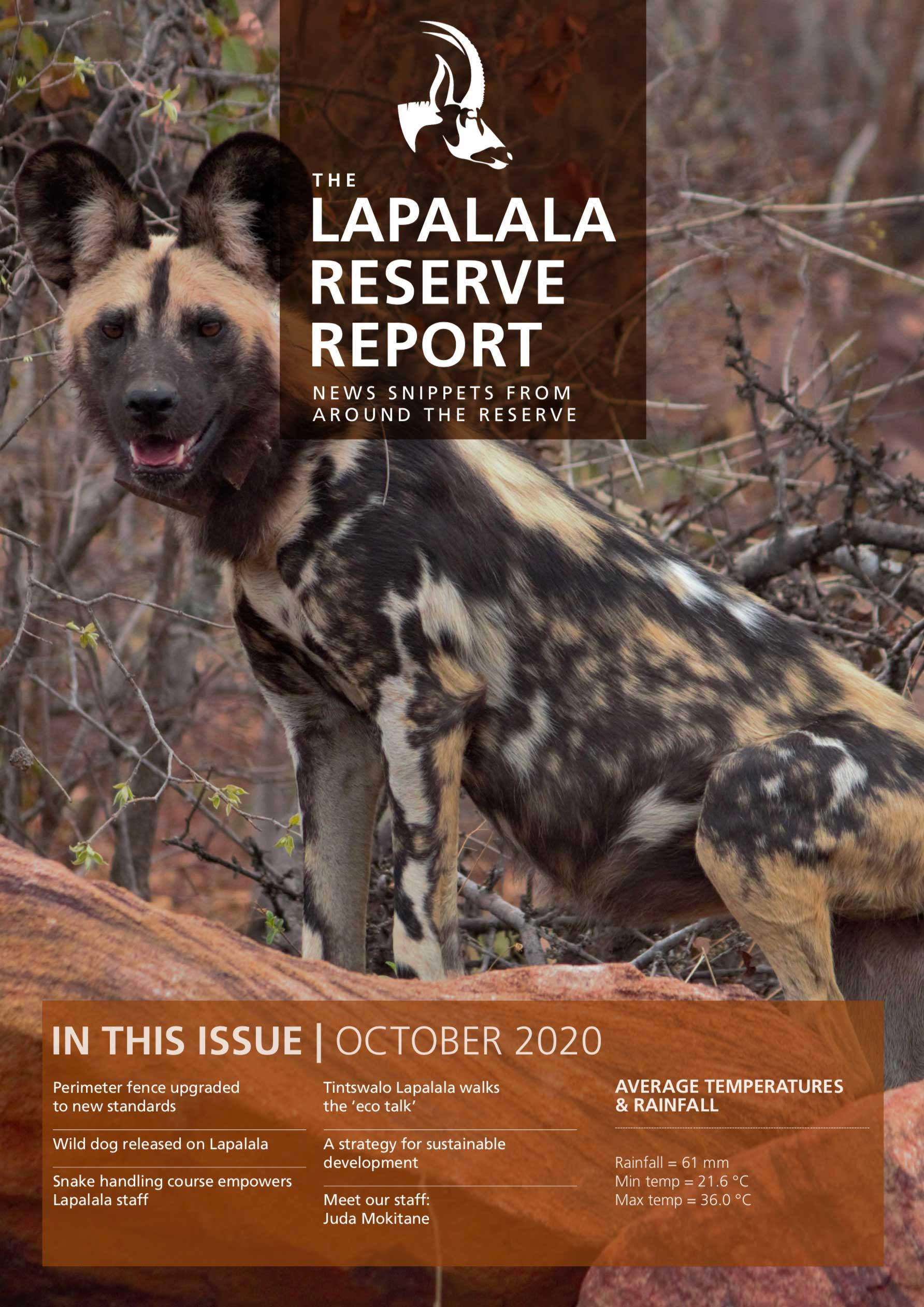 Lapalala Reserve Report – October 2020